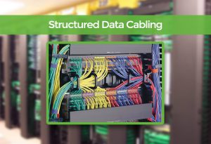 Structured Data Cabling for schools in Dorset